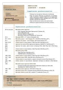 modele-cv-alinea-ref-008-menuisier